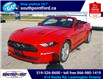 2021 Ford Mustang EcoBoost (Stk: S10741R) in Leamington - Image 26 of 27