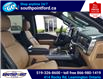 2021 Ford F-150 Lariat (Stk: S7102B) in Leamington - Image 13 of 29