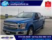 2019 Ford F-150 XLT (Stk: S7104A) in Leamington - Image 11 of 28