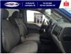 2019 Ford F-150 XLT (Stk: S7104A) in Leamington - Image 13 of 28