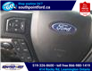 2019 Ford F-150 XLT (Stk: S7104A) in Leamington - Image 19 of 28