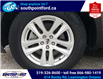 2019 Ford Explorer XLT (Stk: S7110A) in Leamington - Image 10 of 28