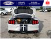 2016 Ford Shelby GT350 Base (Stk: S10757R) in Leamington - Image 6 of 26