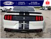 2016 Ford Shelby GT350 Base (Stk: S10757R) in Leamington - Image 7 of 26