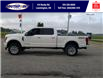 2019 Ford F-250 Platinum (Stk: S7113A) in Leamington - Image 10 of 28