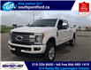 2019 Ford F-250 Platinum (Stk: S7113A) in Leamington - Image 11 of 28