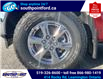 2018 Ford F-150 XLT (Stk: S10765) in Leamington - Image 10 of 21
