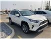 2019 Toyota RAV4 Limited (Stk: 3514) in Cochrane - Image 4 of 6