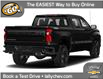 2021 Chevrolet Silverado 1500 LT Trail Boss (Stk: SI00799) in Tilbury - Image 3 of 9