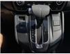 2018 Honda CR-V  (Stk: UM2678) in Chatham - Image 14 of 22