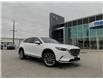 2019 Mazda CX-9  (Stk: UM2706) in Chatham - Image 1 of 24