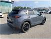 2021 Mazda CX-5 Kuro Edition (Stk: NM3537) in Chatham - Image 5 of 21
