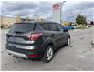 2017 Ford Escape SE (Stk: 2653A) in Orléans - Image 5 of 15