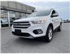 2018 Ford Escape SE (Stk: 5378A) in Gloucester - Image 4 of 22