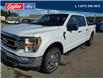 2021 Ford F-150 XLT (Stk: 21T122) in Quesnel - Image 7 of 14