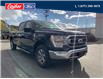 2021 Ford F-150 XLT (Stk: 21T135) in Quesnel - Image 1 of 15