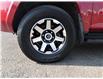 2020 Toyota 4Runner Base (Stk: TUM234A) in Lloydminster - Image 2 of 10