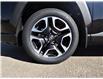 2021 Toyota RAV4 Trail (Stk: RAM266) in Lloydminster - Image 13 of 20