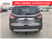 2013 Ford Escape SEL (Stk: U04713AA) in Chatham - Image 4 of 16