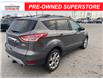 2013 Ford Escape SEL (Stk: U04713AA) in Chatham - Image 5 of 16