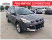 2013 Ford Escape SEL (Stk: U04713AA) in Chatham - Image 7 of 16