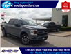 2019 Ford F-150 XLT (Stk: S7040A) in Leamington - Image 1 of 26