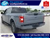 2019 Ford F-150 XLT (Stk: S7040A) in Leamington - Image 8 of 26