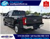 2019 Ford F-350 XLT (Stk: S6963B) in Leamington - Image 8 of 30