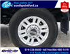 2019 Ford F-350 XLT (Stk: S6963B) in Leamington - Image 11 of 30