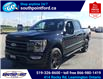 2021 Ford F-150 Lariat (Stk: S10712R) in Leamington - Image 10 of 26
