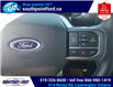 2021 Ford F-150 Lariat (Stk: S10712R) in Leamington - Image 20 of 26