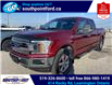 2018 Ford F-150 XLT (Stk: S10765) in Leamington - Image 9 of 21