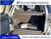 2020 Ford EcoSport SE (Stk: ES26834) in Tilbury - Image 5 of 17