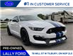 2017 Ford Shelby GT350 Base (Stk: 2771) in Tilbury - Image 8 of 45