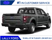 2019 Ford F-150  (Stk: LB249) in Tilbury - Image 3 of 9