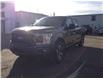 2019 Ford F-150 XL (Stk: 21214A) in Wilkie - Image 3 of 21