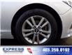 2017 Hyundai Sonata  (Stk: P15-1135A) in Calgary - Image 8 of 19