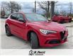 2021 Alfa Romeo Stelvio Quadrifoglio (Stk: 512AR) in Oakville - Image 6 of 16