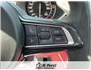 2021 Alfa Romeo Stelvio Quadrifoglio (Stk: 550AR) in Oakville - Image 12 of 16