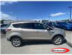 2017 Ford Escape SE (Stk: 21T427A) in Midland - Image 2 of 11