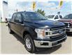 2020 Ford F-150 XLT (Stk: B7975) in Saskatoon - Image 1 of 14