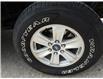 2020 Ford F-150 XLT (Stk: B7975) in Saskatoon - Image 5 of 14