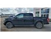2017 Ford F-150  (Stk: 41020B) in Humboldt - Image 3 of 13