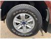 2016 Ford F-150 XLT (Stk: B7939) in Saskatoon - Image 10 of 16