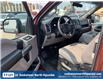 2016 Ford F-150 XLT (Stk: B7939) in Saskatoon - Image 11 of 16