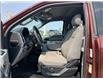 2016 Ford F-150 XLT (Stk: B7939) in Saskatoon - Image 12 of 16