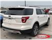 2017 Ford Explorer Platinum (Stk: 0333PT) in Midland - Image 3 of 17