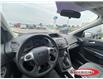 2015 Ford Escape SE (Stk: 0342PT) in Midland - Image 13 of 14