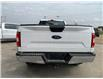 2019 Ford F-150  (Stk: B0235) in Humboldt - Image 5 of 8