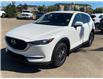 2019 Mazda CX-5 GX (Stk: B8037) in Saskatoon - Image 8 of 12
